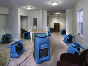 Water Damage Coon Rapids MN
