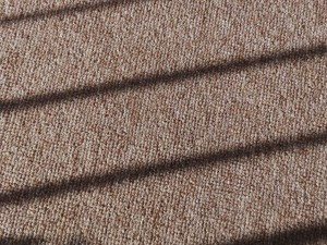 How Often Should You Get Your Carpets Cleaned? | Done Right Carpet and Restoration
